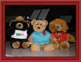 Mounty Bear Buddies