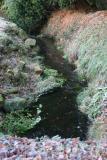 Abinger Stream