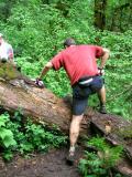 Walter hops a log