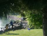 More fishing in the canal