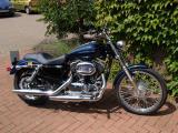 Harley Davidson 1200c Sportster
