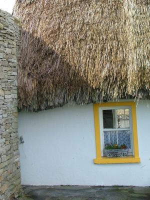 Cozy Thatch Cottage