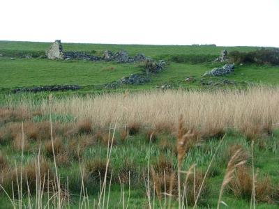 Long Shot of Ruins