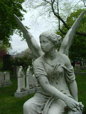 Angel in Mount Auburn Close