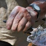Sculpter's Hand
