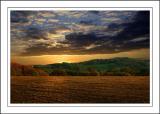 Golden sunset, Dorset