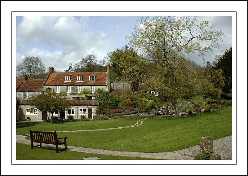 Chalice Well Garden, Glastonbury, Somerset (2253)