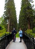 A visit to Benmore Botanical Gardens - Dunoon, Argyll, Scotland. May '05.