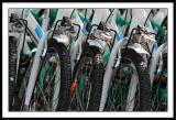Fête de l'ohLes vélos