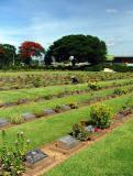 Tending the Graves