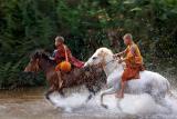 horse monk 1311-02214-2.jpg