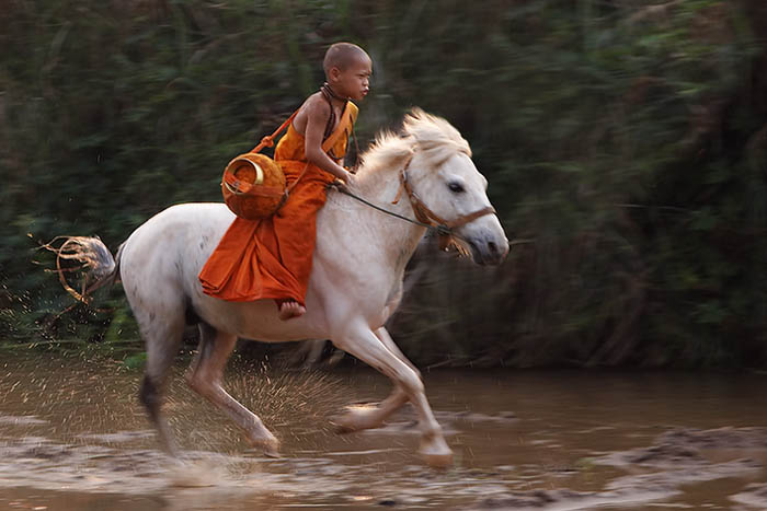 horse monk 1370-02208.jpg