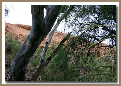 Burra & the Burra Gorge