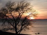 Sunset At Irishvale - Cape Breton
