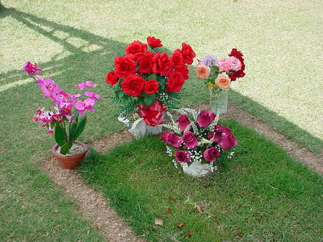 Nita and beautiful flowers