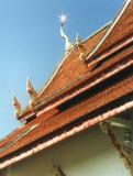 Shiny Roof