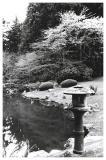Nitobe Garden Pond (B&W)