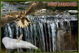 Parc Paradisio