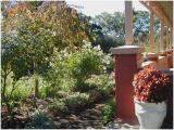 Gamble Cottage Garden  Coromandel Valley