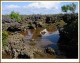 Wasini Island-Kenia