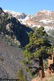 Lundy Canyon 5