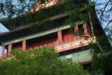 China World [2003]