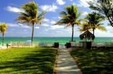 5513_HI Beach Walk.jpg