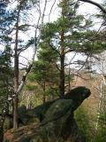Diabli Kamień(155-5584_IMG.JPG)