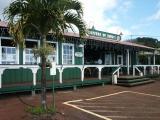Molokai coffee farm