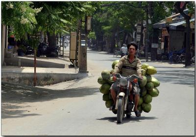 Coconut delivery