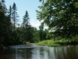 beebe-river-summer-3321.jpg