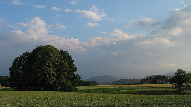 Laakirchen - Österreich - 20.6.2003