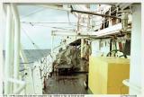 142-Luymes SB oceaanlier copy.jpg