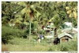 187-Antigua copy.jpg
