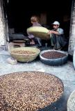 Cleaning the seeds, Peshawar