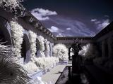 Brookgreen Gardens infrared 3