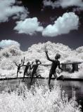 Brookgreen Gardens infrared 4