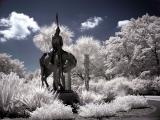 Brookgreen Gardens infrared 5