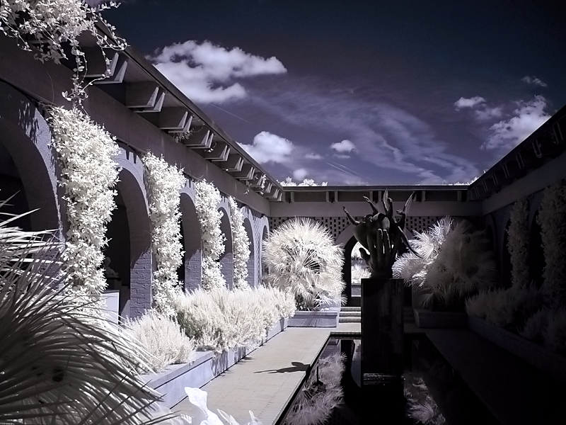Brookgreen Gardens infrared 3