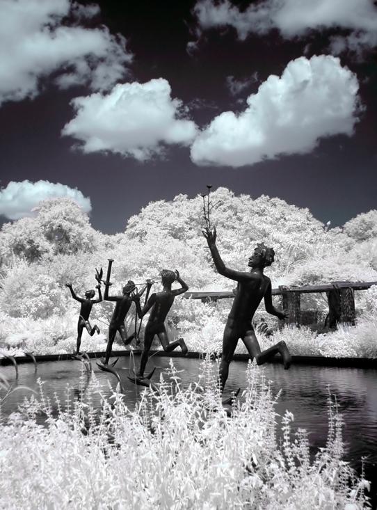 Brookgreen Gardens infrared 4