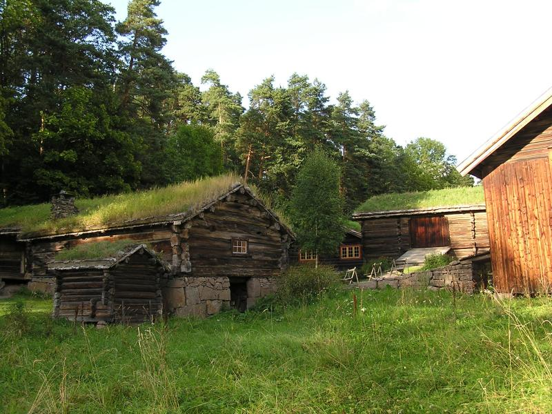 Grass roof homes and village outbuildings