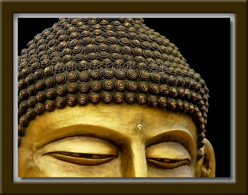 Big Eyes & Curly Hair (The Buddha)