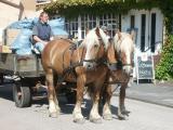 Waste management by horsecraft
