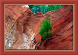 y4150_Canyon-08-xUSM.jpg