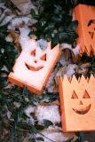 Miksang Halloween