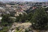 Close Landscape