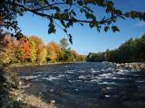 pemigewasset-river-8556.jpg