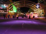 Montreal Winter Lights