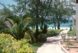 Bahamas010.jpg