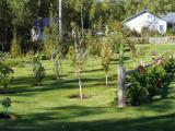 Carney Garden - Wasilla AK